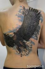 Большая тату на спине девушки - орел