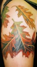Цветная тату на плече девушки в виде осенних листьев