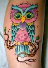 Цветная татуировка совы