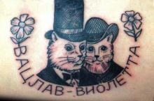 Тату - надпись на русском и кошки на предплечье у девушки