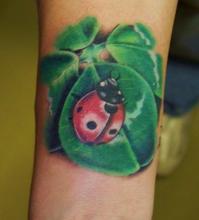 Татуировка божья коровка на листке на руке